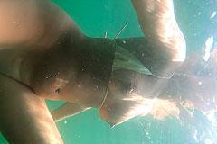 Victoria onderwater
